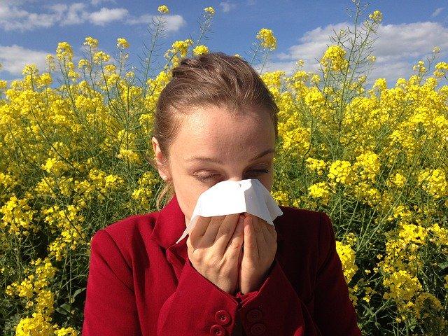 Allergien ohne Auslöser - Schlaganfall und Reha - Antidepressiva und Gewaltpotenzial
